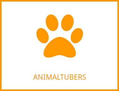 Visit Animaltubers